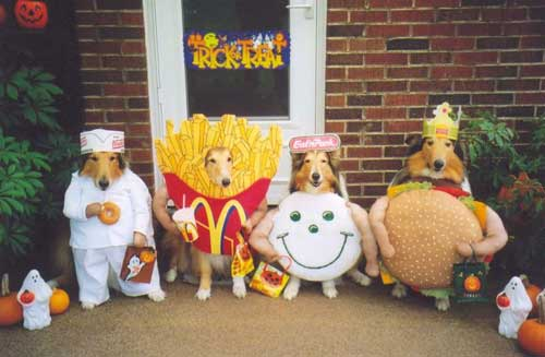 border collie happy meal mcdonalds costume fries hamberger