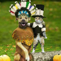 Thanksgiving Pilgram and Indian Costume & Funny Pictures of Dogs and Puppies | Cliptank.com