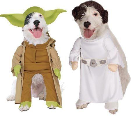 princess lia and yoda dogs dressed up