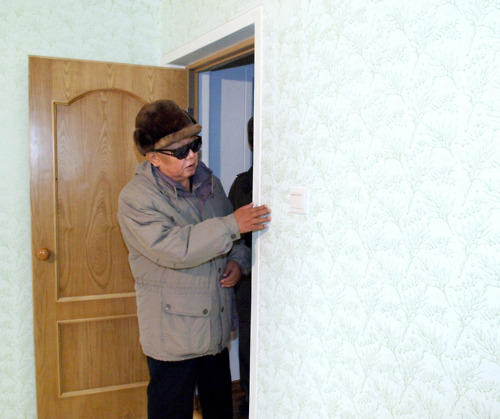 looking at wallpaper